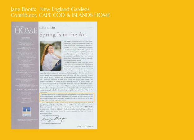 Very nice words from Nancy Berry, Cape Cod Home editor