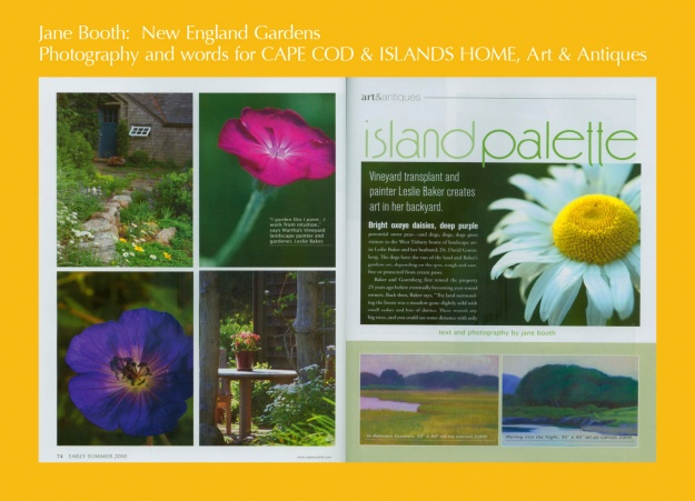 Oxeye daisies, perennial sweet peas, and dogs dogs dogs greet me when I arrive at the West Tisbury home of artist, Leslie Baker and her husband, Dr. David Gorenberg.