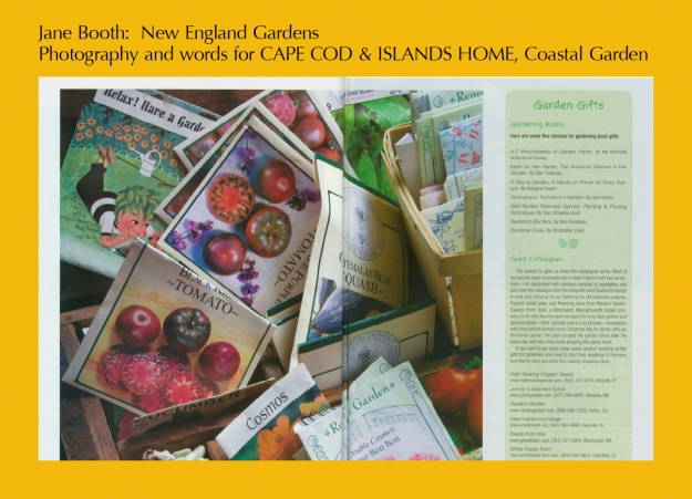 In the early winter I look forward to the arrival of seed and plant catalogues that I keep for reference and to drive a gardener crazy with want.